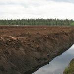 Humus on luonnollinen osa vesiekosysteemiä