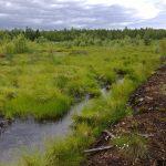 Kyyjärven humus- ja kiintoaineselvitys: turvetuotannon osuus n. 1 %